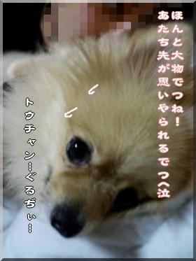 b0078073_14155695.jpg