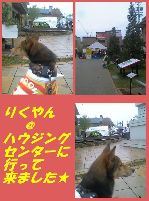 d0032004_17235129.jpg
