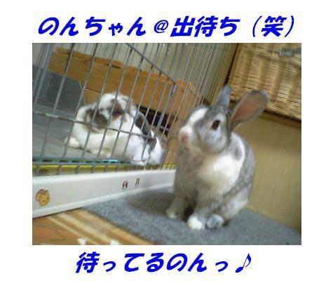 d0032004_1729544.jpg