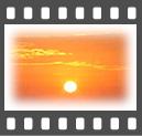 b0020911_0525491.jpg
