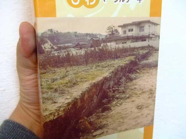 淡路島銘菓 「野島活断層」マーブルケーキ_b0054727_23254669.jpg