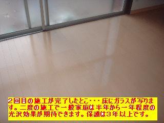 f0031037_1721638.jpg
