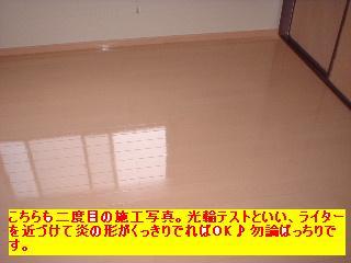 f0031037_1741573.jpg