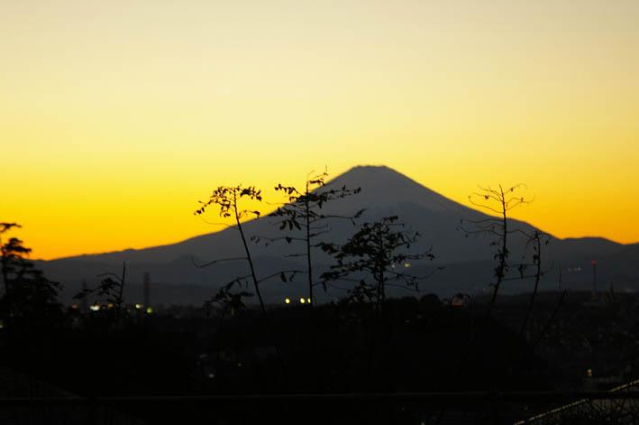 富士山は富士山の形で見られれば何処から見ても美しい_c0014967_18332363.jpg