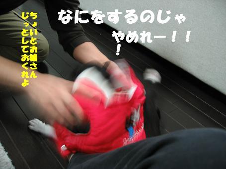 c0092097_9203460.jpg