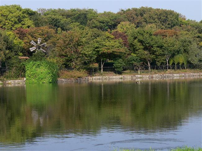 """2006大阪遠征日記  「女刑事""""KiyoMAX""""旅情編」_b0065730_20363982.jpg"""