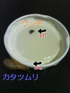 d0042972_1726718.jpg