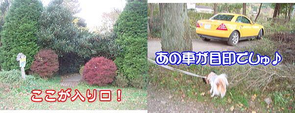 f0011845_1361252.jpg