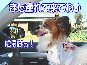 f0011845_141096.jpg