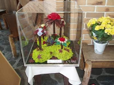 枯れないお花の店_a0077071_725792.jpg