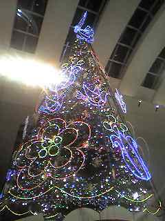 クリスマス!?_e0097491_0401413.jpg