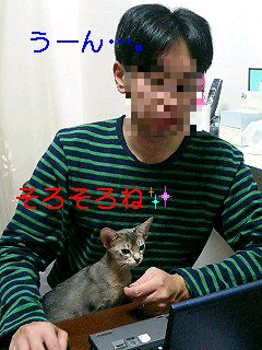 f0113207_2264318.jpg