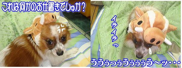 f0011845_22441967.jpg