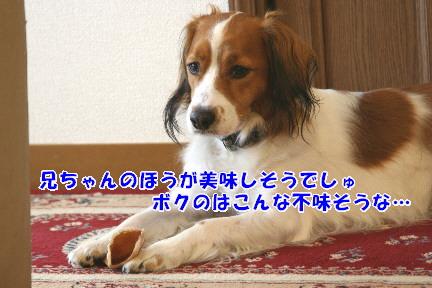 d0013149_0272653.jpg