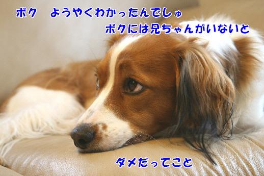 d0013149_23284863.jpg