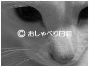 e0104869_103393.jpg