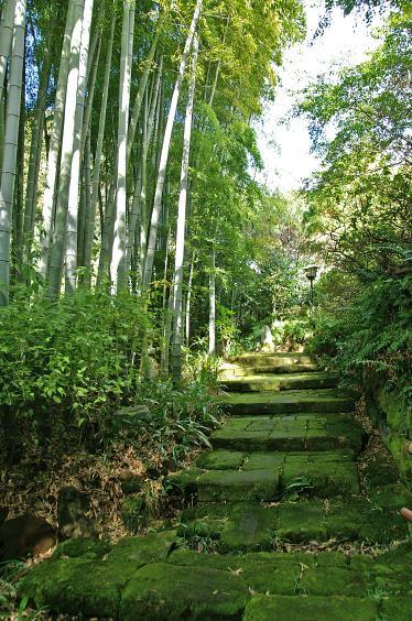 鎌倉ウォーキング_c0031975_0144342.jpg