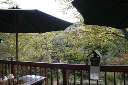 11月連休旅行03 : おいしい蕎麦屋_e0054299_045473.jpg