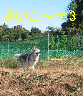 f0112407_221519.jpg