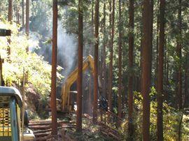 中規模林産現場_e0002820_16244712.jpg