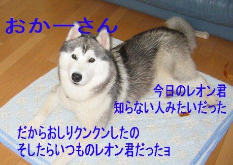 f0112407_2253459.jpg
