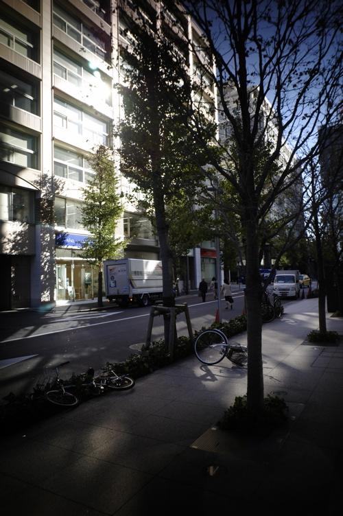 東京の秋はどこまで、いつまで深くなっていくのだろう_f0042194_0304928.jpg
