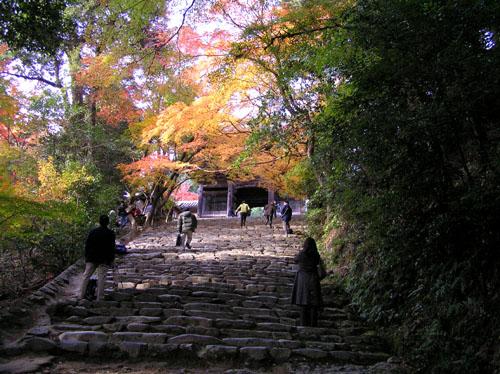 高雄 神護寺1_e0048413_22384623.jpg