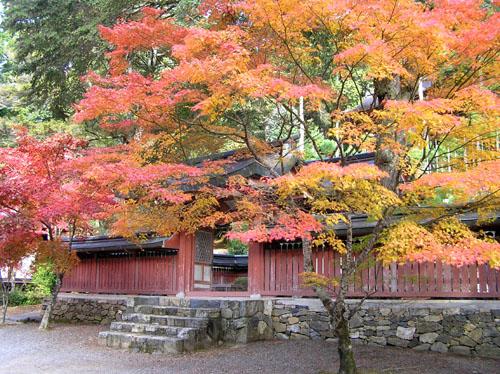 高雄 神護寺1_e0048413_223924.jpg