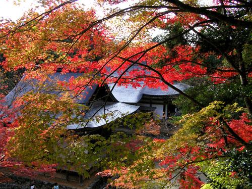 高雄 神護寺1_e0048413_2240076.jpg