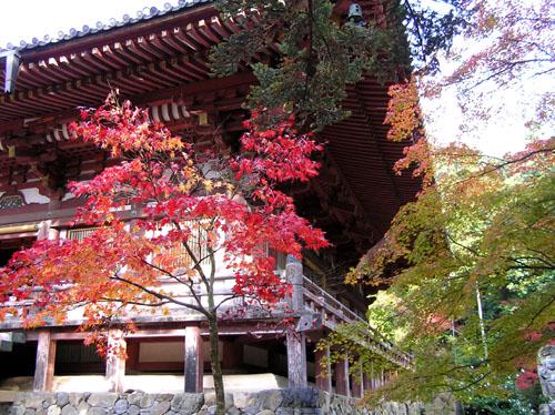 高雄 神護寺2_e0048413_2256865.jpg