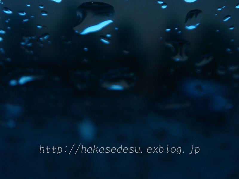 b0100129_1855735.jpg