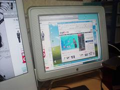 c0042029_1648485.jpg