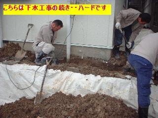 f0031037_2075215.jpg