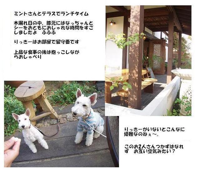 b0101844_0135398.jpg