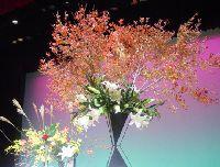 お花っていいですね~♪_e0081959_18361171.jpg