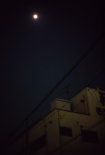 d0038900_1173649.jpg