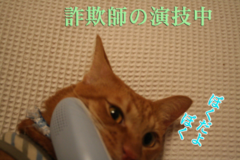 f0101903_20542362.jpg