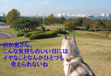 f0112407_23551421.jpg
