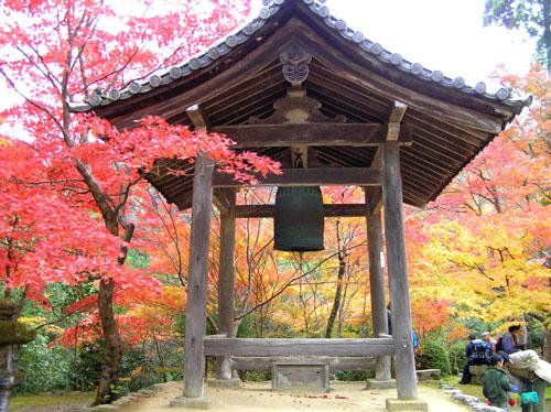 槙尾山 西明寺1_e0048413_1029147.jpg