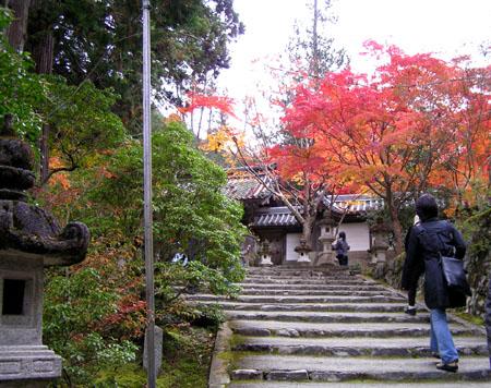 槙尾山 西明寺2_e0048413_10391949.jpg