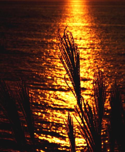 晩秋の夕陽(山陰)_d0074828_2365069.jpg