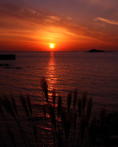 晩秋の夕陽(山陰)_d0074828_2375922.jpg