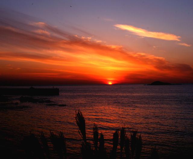 晩秋の夕陽(山陰)_d0074828_2392227.jpg