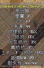b0089730_105522.jpg