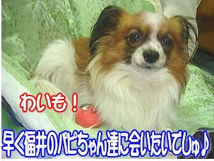 f0011845_22584953.jpg