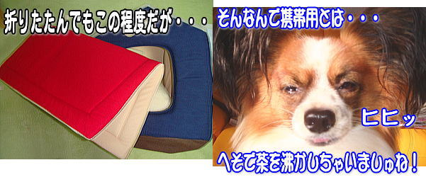 f0011845_2325297.jpg