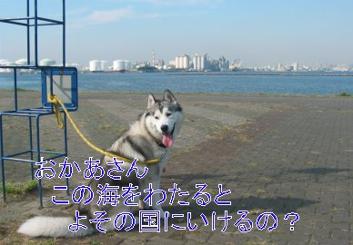 f0112407_0312269.jpg