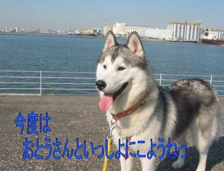 f0112407_0465392.jpg