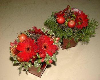 赤と緑と茶色で・・・_b0106578_1802132.jpg