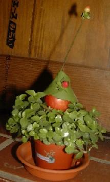 赤と緑と茶色で・・・_b0106578_1844859.jpg